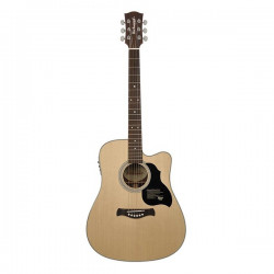 Richwood D-60CE Master Series Dreadnought